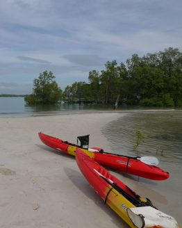 kayaks resting on sand bank