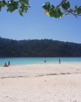 a beach sea and island view at koh rok island in krabi