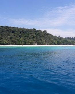Photo of island sandy beach blue water